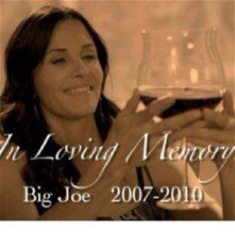 Cougar Town Memes - 17 best images about cougar town on pinterest mondays bottle and quotes