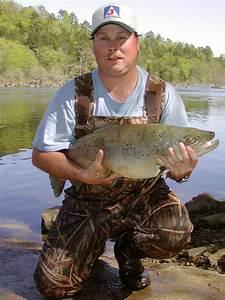 Taste the Rainbow: My Hunt for Oklahoma Trout – The ...