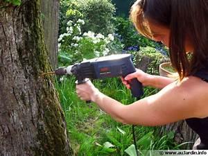 Tuer Un Arbre Avec De L Acide : la d vitalisation d 39 une souche d 39 arbre ~ Dailycaller-alerts.com Idées de Décoration