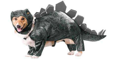 animal planet dinosaur dog costumes noveltystreet