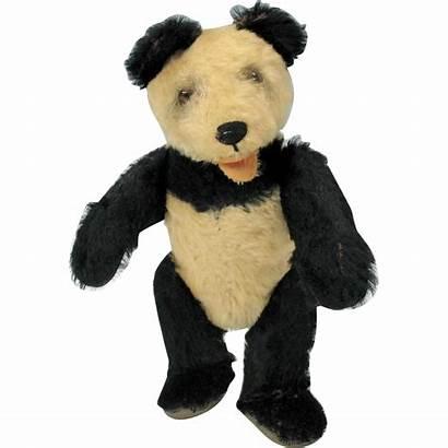 Teddy Panda Bear Steiff 1950 Quirkyantiques