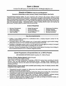 director sales dynamic resumes of nj With dynamic resume