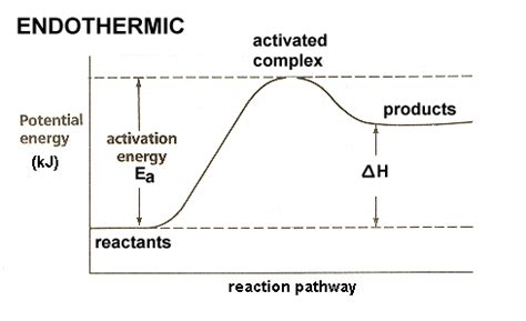 How Can I Draw An Endergonic Reaction In A Potential Energy Diagram? Socratic