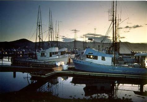 Bodega Bay Fishing Boats by Calisphere Fishing Boats At Dock In Bodega Bay