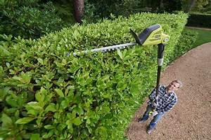 Taille Des Haies : le taille haie sur perche r el plus ou simple gadget ~ Dallasstarsshop.com Idées de Décoration