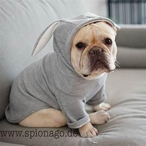 Hundebekleidung Französische Bulldogge : sehr niedlicher hunde pullover kaninchen ohr ~ Frokenaadalensverden.com Haus und Dekorationen