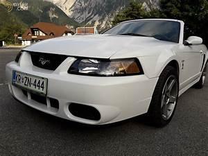 2003 Ford Mustang SVT Cobra Convertible for Sale - Dyler