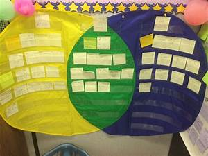 We Used This Large Venn Diagram To Compare A Chapter Book