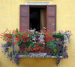 Balkon Wand Verschönern : balkon blumen f r eine sch ne au engestaltung ~ Indierocktalk.com Haus und Dekorationen