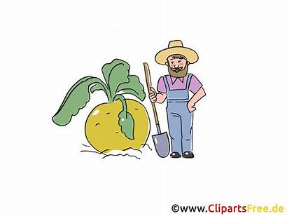 Clipart Bauer Cartoon Bild Farmer Bauernhof Utklipp