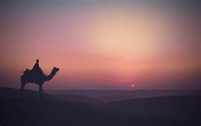 Desert Sunset Camel Wallpapers Minimalist Landscape 4k