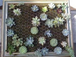Beautiful Interiors Of Homes Cool Diy Green Living Wall Projects For Your Home