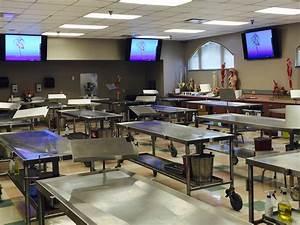 Human Anatomy Dissection Lab