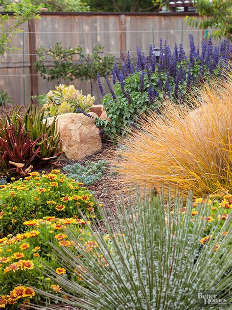 xeriscape garden plants xeriscaping growing flowers grasses and herbs