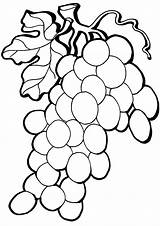 Grape Coloring Pages sketch template