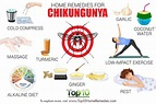 Home Remedies for Chikungunya   Top 10 Home Remedies