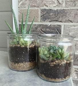 Minigarten Im Glas : pflanzen im geschlossenen glas pflanzen im glas glasbiotope westfach pflanzen minigarten im ~ Eleganceandgraceweddings.com Haus und Dekorationen