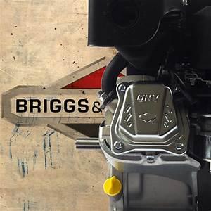 Briggs And Stratton 356447