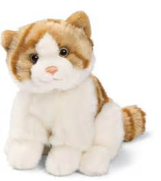 stuffed animal cats cat plush stuffed stuffed animals photo 11219376 fanpop