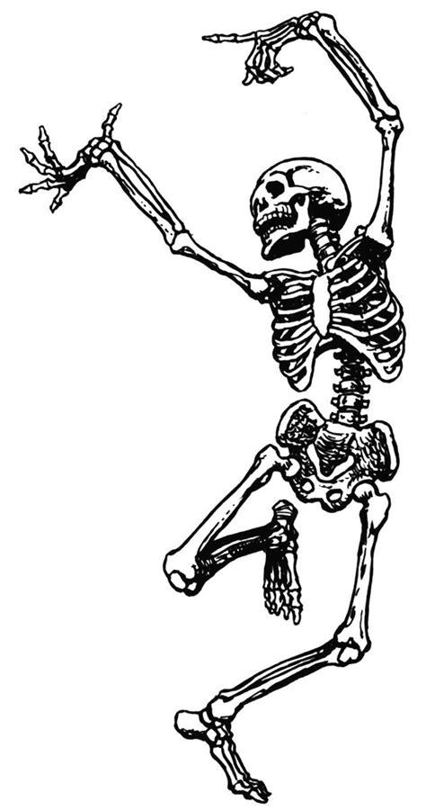 skeleton clipart phil wade s course skeleton school skeleton drawings