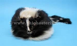 Head Size Chart Fur Hats And Skunk Hats And Real Skunk Hats
