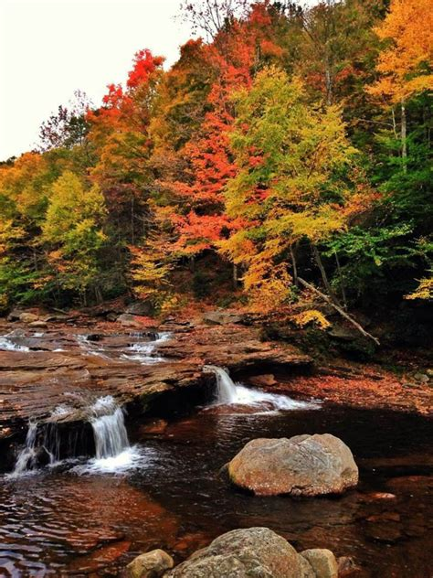 dolly sods wilderness hiking