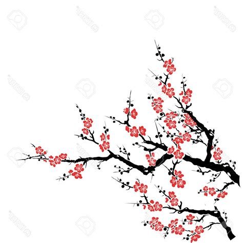 Sakura Flower Draw Top 10 Plum Tree Red Cherry Blossom