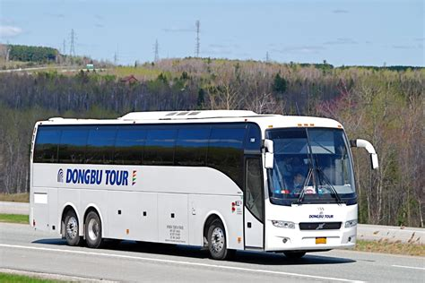 volvo bus images