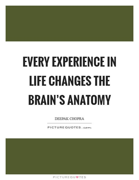 life experience quotes sayings life experience picture