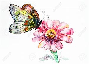Drawn butterfly flower painting - Pencil and in color ...