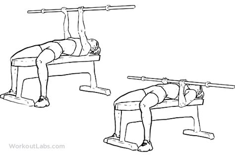 Reverse Triceps Bench Press Workoutlabs
