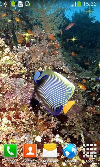 Wallpapers Fish Ocean Android App Mobile