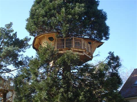 maison en bois dans les arbres il n y a pas que qui vit dans les arbres actualit 233 s seloger