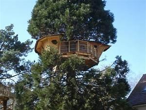 il ny a pas que tarzan qui vit dans les arbres With maison en tronc d arbre