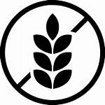 Gluten Icon Wheat Allergy Icons Svg Label
