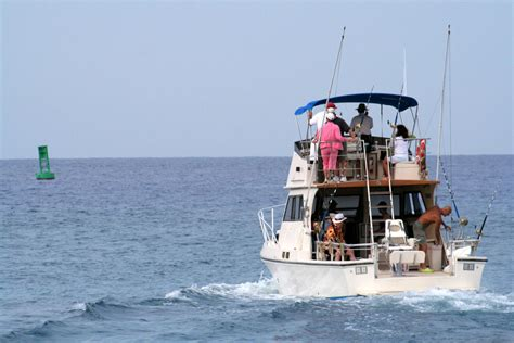 Marco Island Boat Rental by Marco Island Fishing News Vacation Rentals On Marco Island