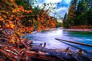 Snoqualmie, River, Washington, River, Forest, Autumn, Landscape, Wallpapers, Hd, Desktop, And