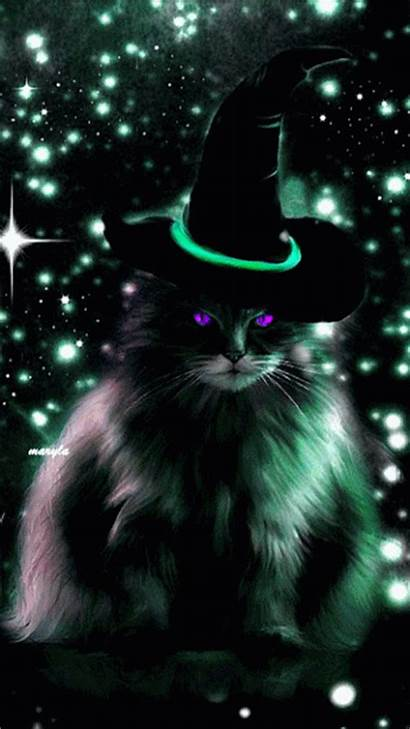 Halloween Cat Witch Kitty Witchy Happy Funny