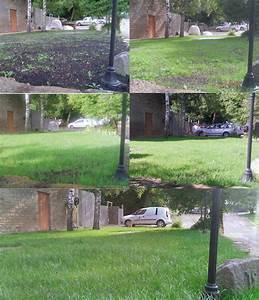 Erde Für Rasen : das gold der ergebnisse von palaterra g rtnern ~ Lizthompson.info Haus und Dekorationen