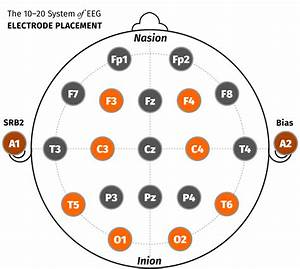 Do Binaural Beats Really Affect Brainwaves   U2014 The Autodidacts