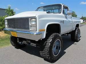 1983 Chevrolet C  K 10 Series K10