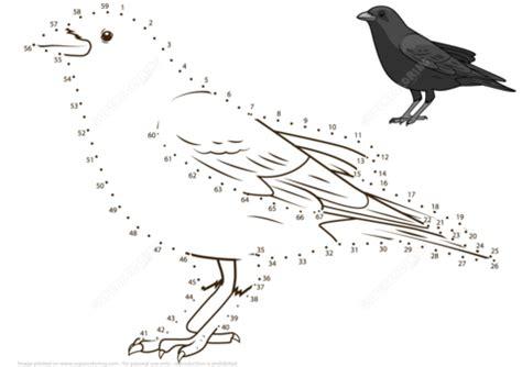 crow dot  dot  printable coloring pages