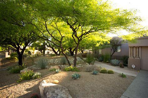 landscaping arizona landscape maintenance tucson az sonoran gardens inc