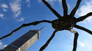 Giant Spider Destroys Skyscraper! Real or Fake? - YouTube