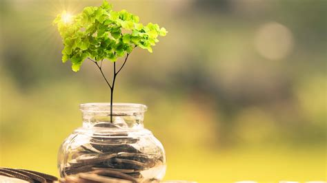 question answered sustainable finance  treasury