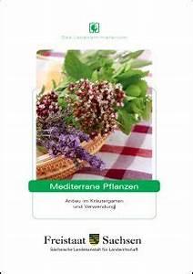 Mediterrane Pflanzen Liste : mediterrane pflanzen ~ Watch28wear.com Haus und Dekorationen