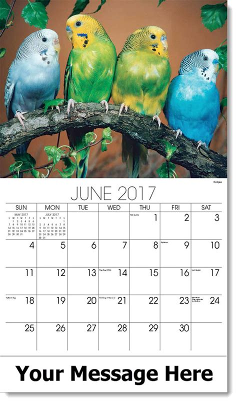 pet shed promo code june 2017 pets and animals calendar pet calendars promotional