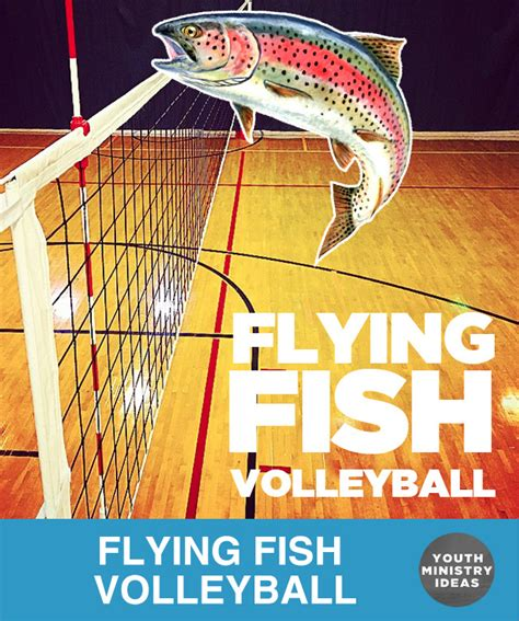 light up volleyball net flying fish volleyball youth downloadsyouth downloads