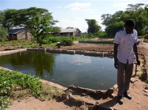 fish farming refugees  water creatively