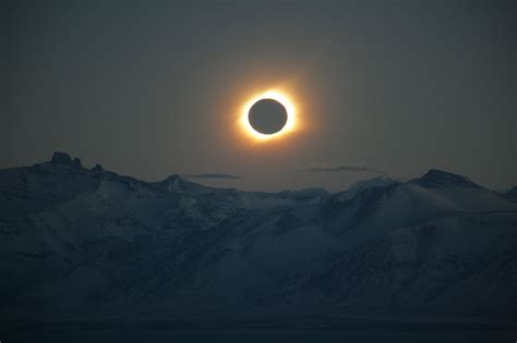 total solar eclipse  europe  march  art sheep
